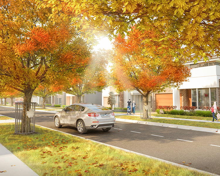 Introducing The Maples, Greenvale